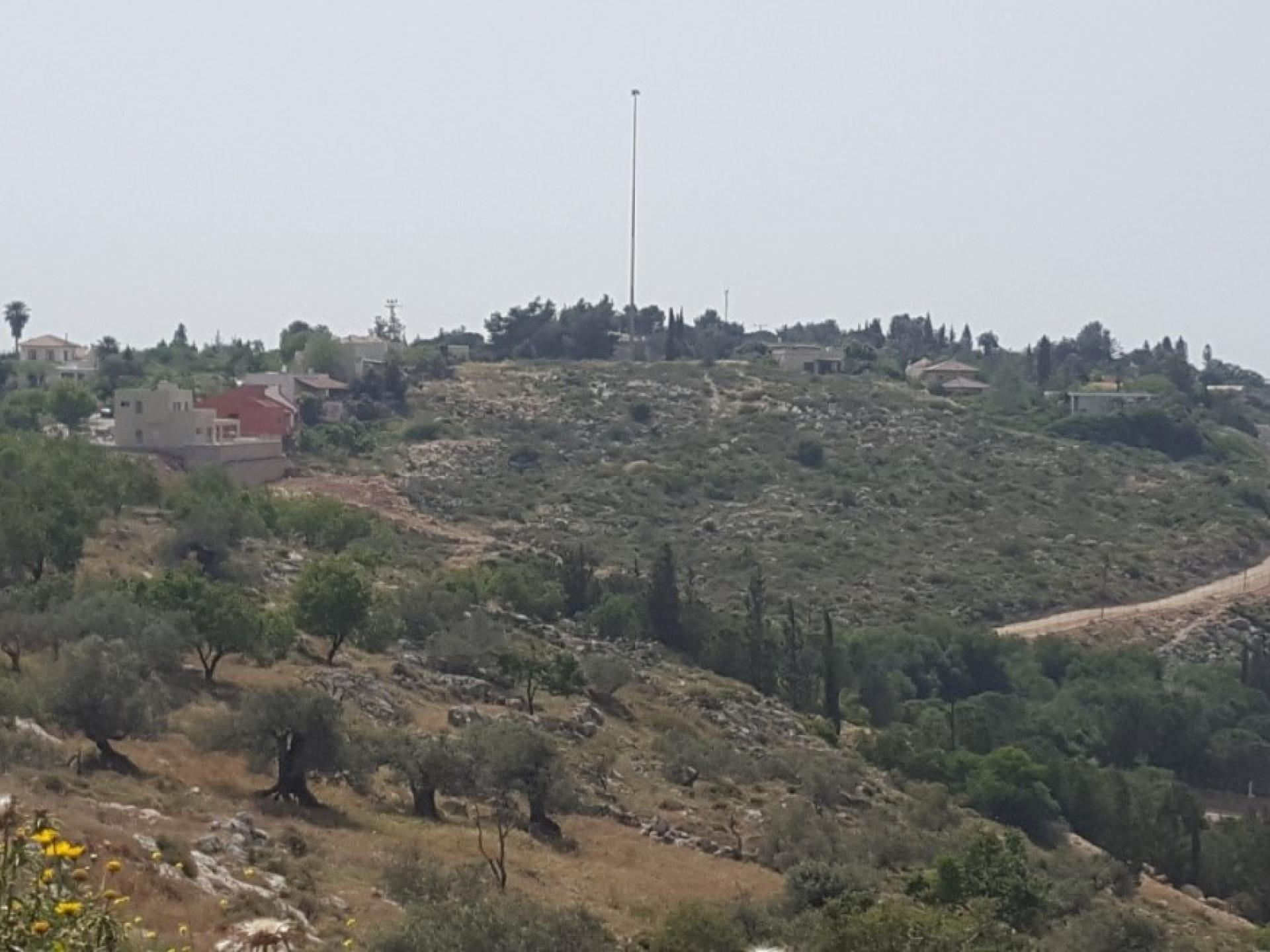 The green triangle on the upper right-hand side, G's olive tree grove to which access has been blocked
