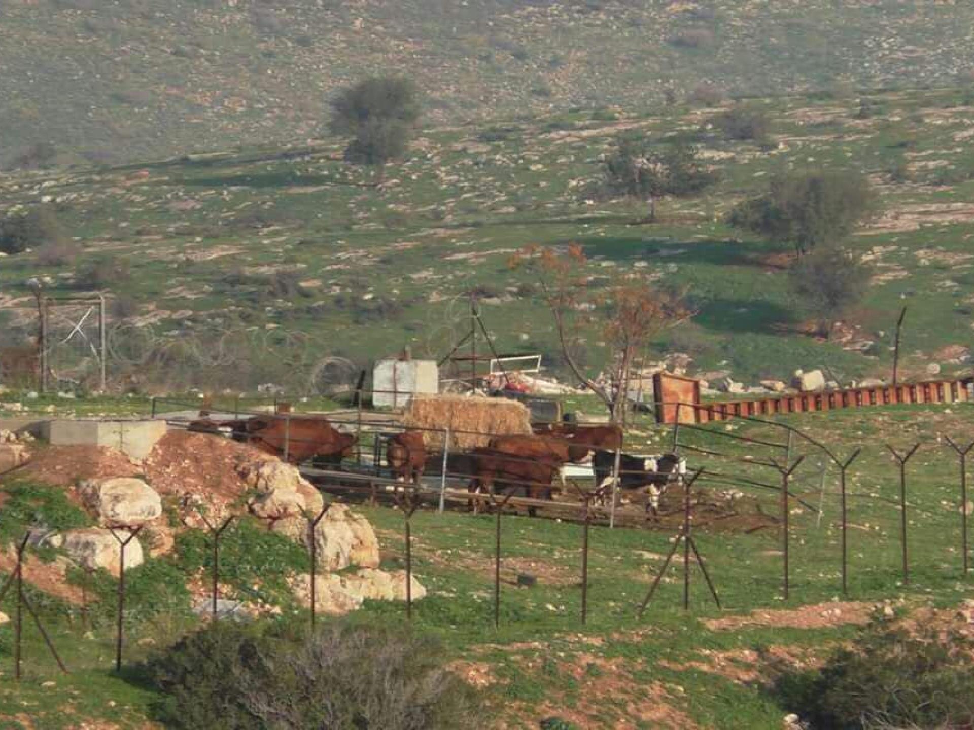 בקעת הירדן: מאחז פיראטי חדש