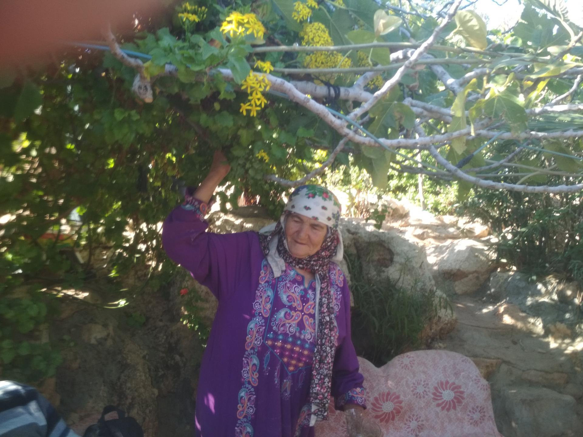 בקעת הירדן: הסבתא סלמה למשפחת דרגמה בגינה הירוקה שלה