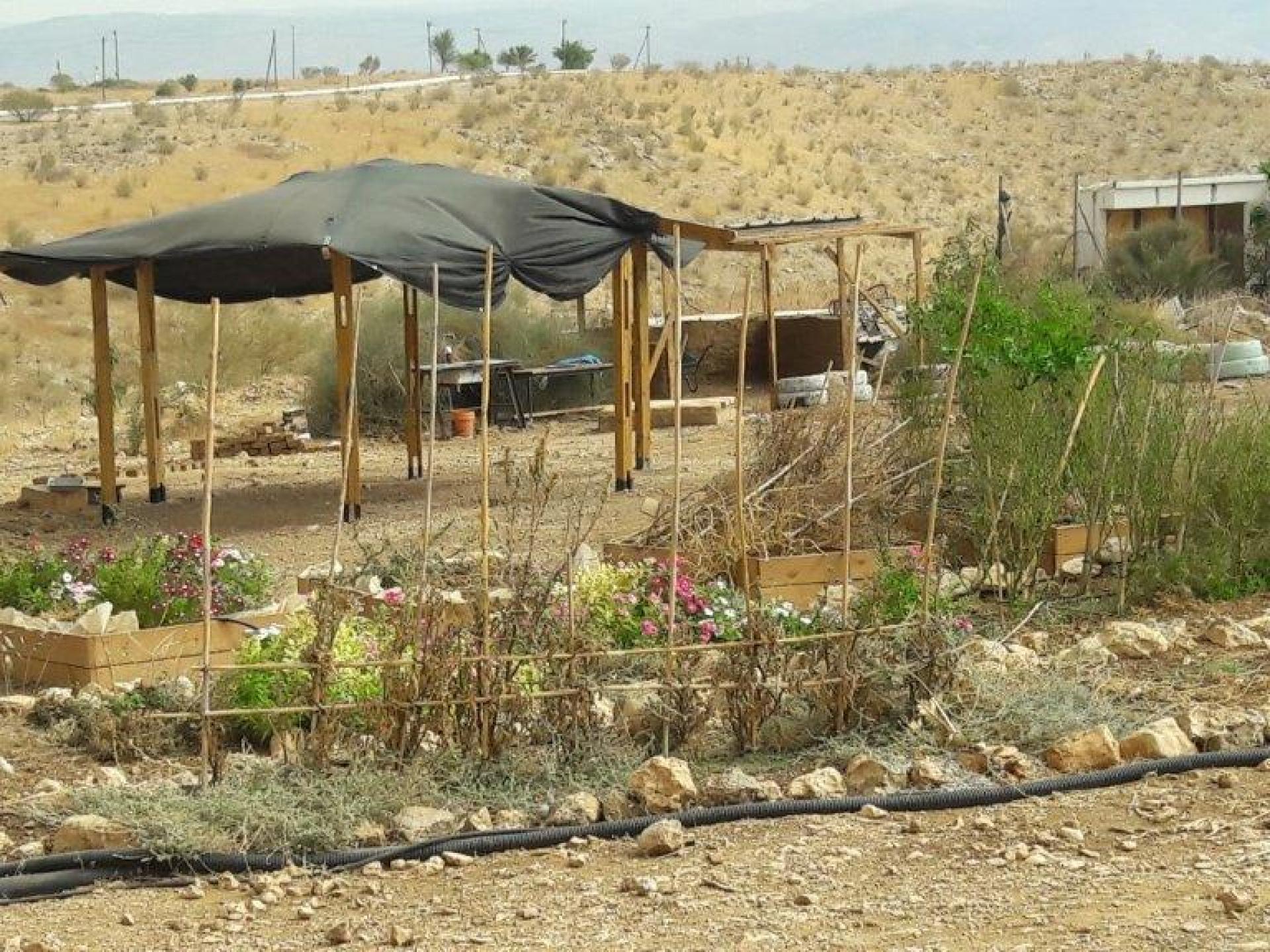 החצר במאחז ליד התנחלות רותם
