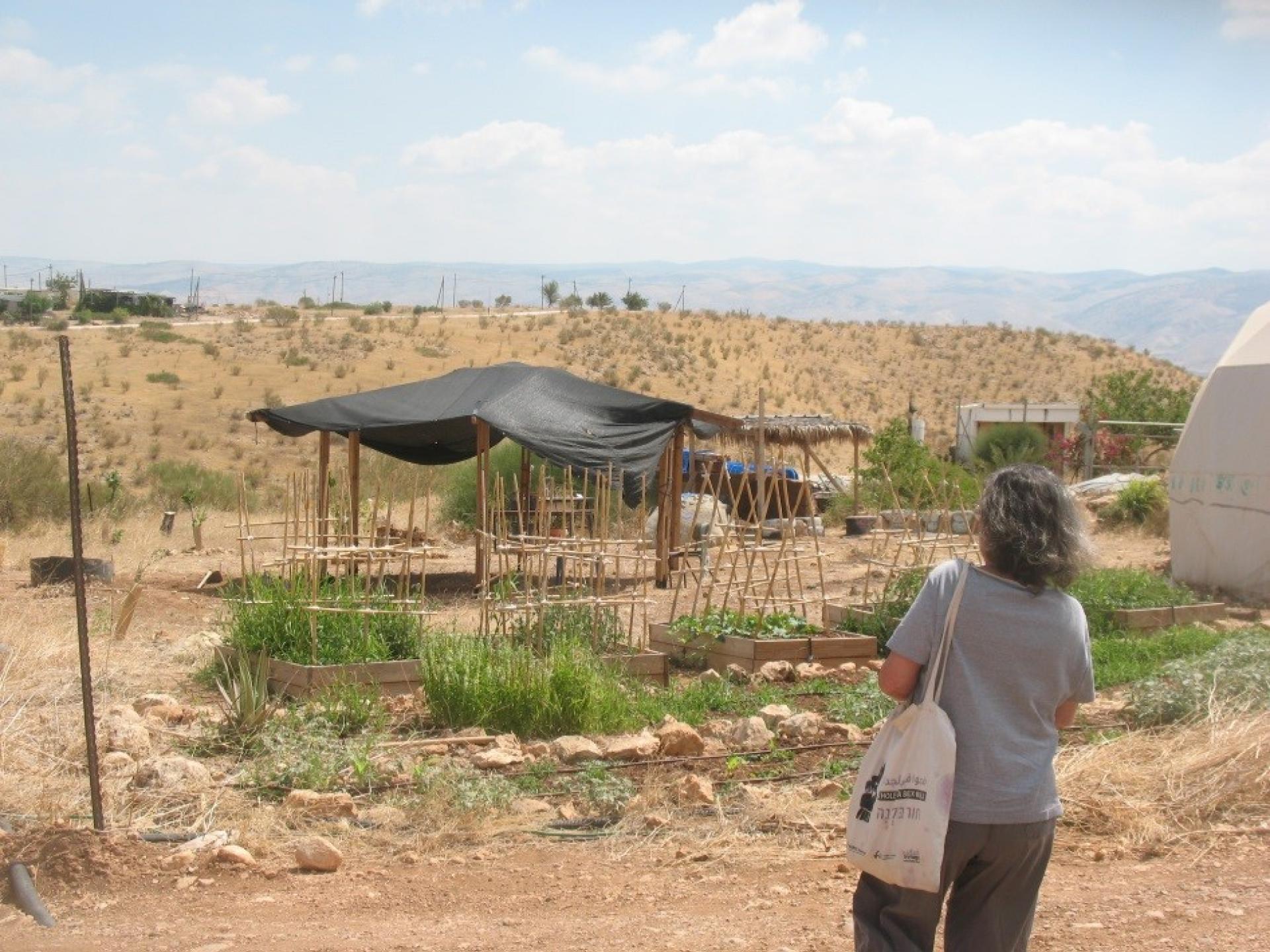 בקעת הירדן: המאחז החדש מדרום להתנחלות רותם ממשיך להתפתח