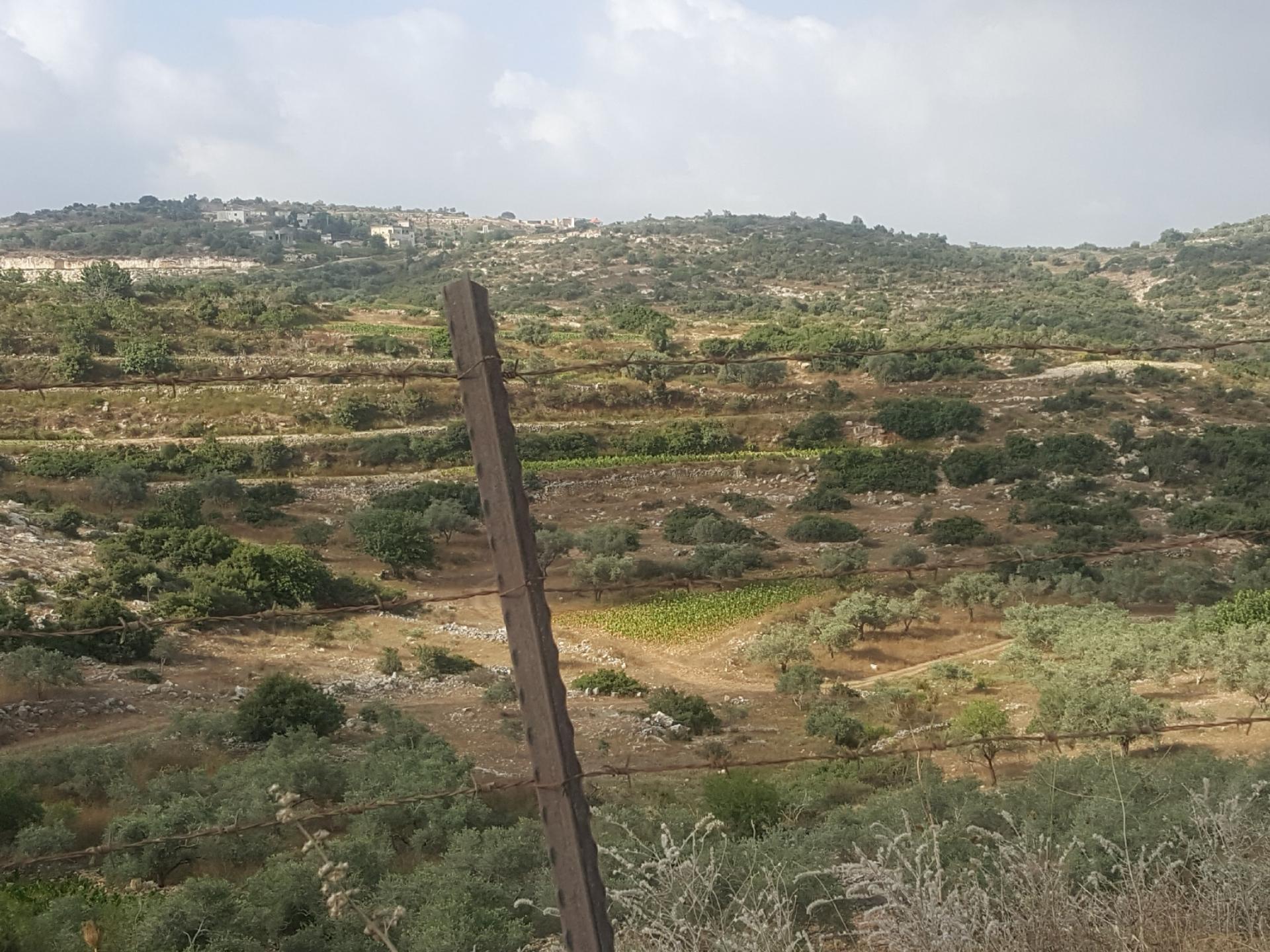 מחסום ברטעה: הנוף הנשקף מעבר לגדרות התיל ולכיבוש