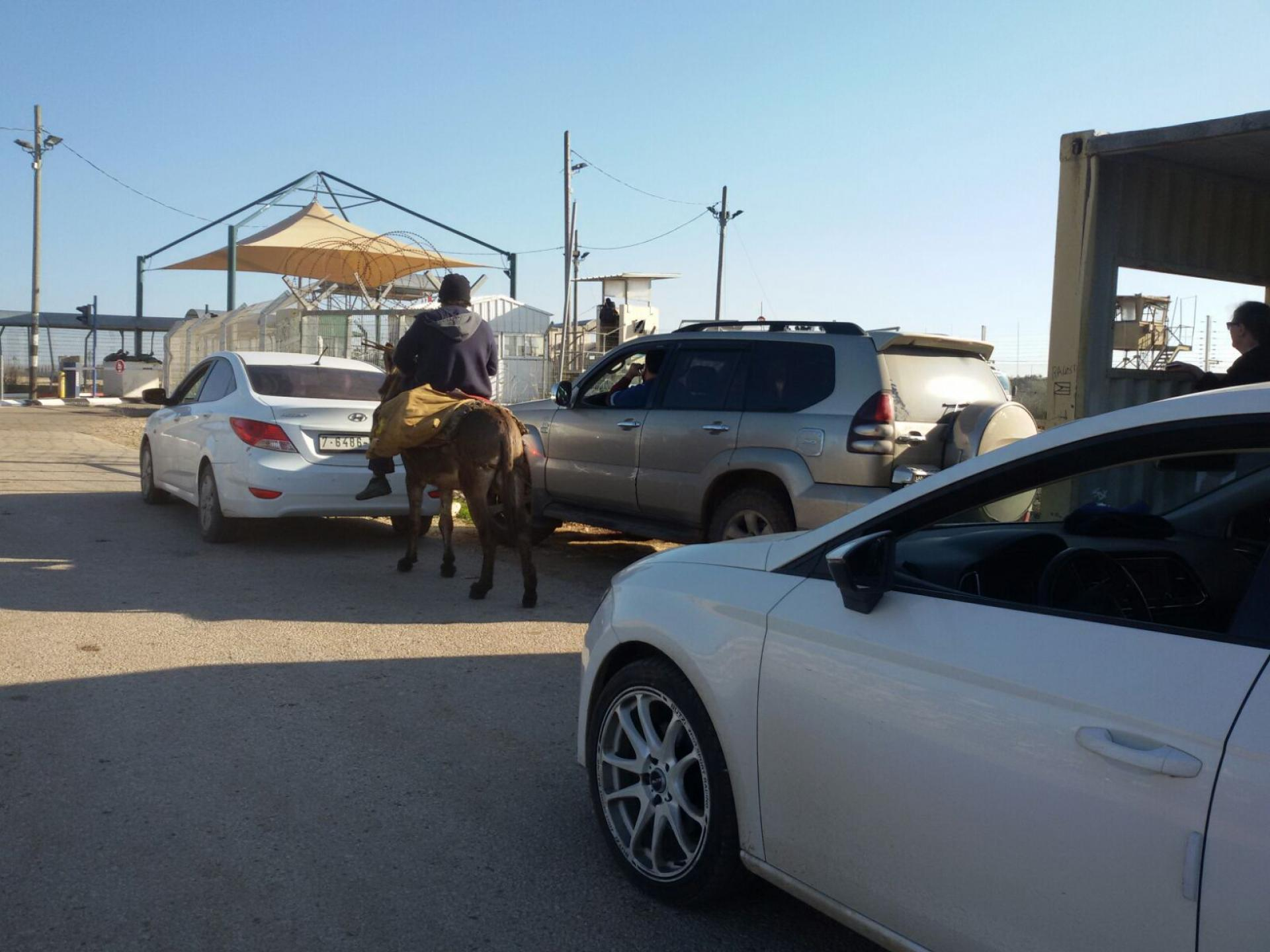ura Checkpoint – Cars and a donkey waiting to cross