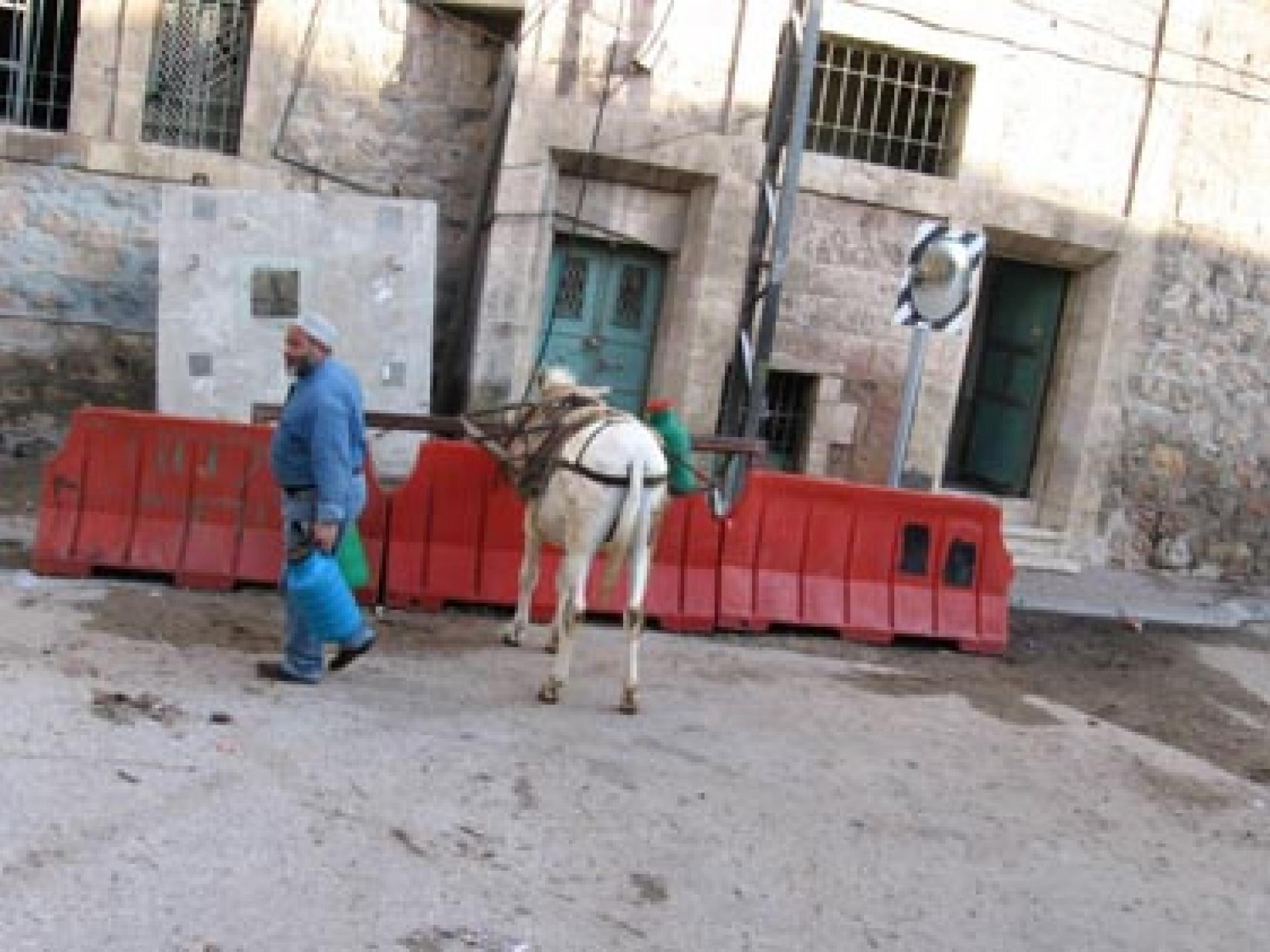 Hebron 17.11.05