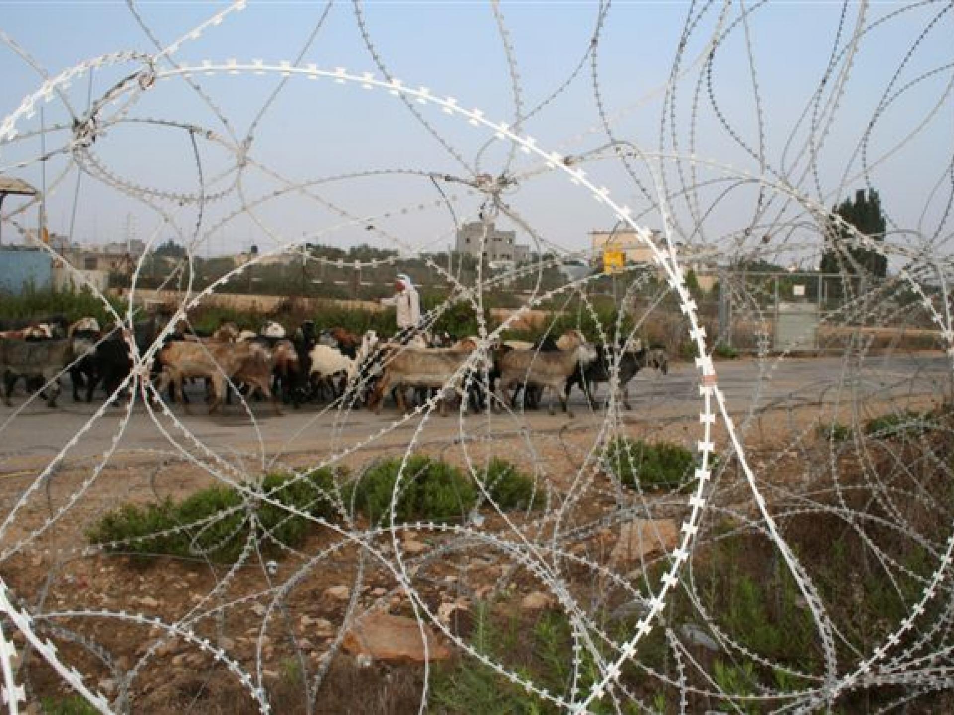 Tura/Shaked checkpoint 13.07.08
