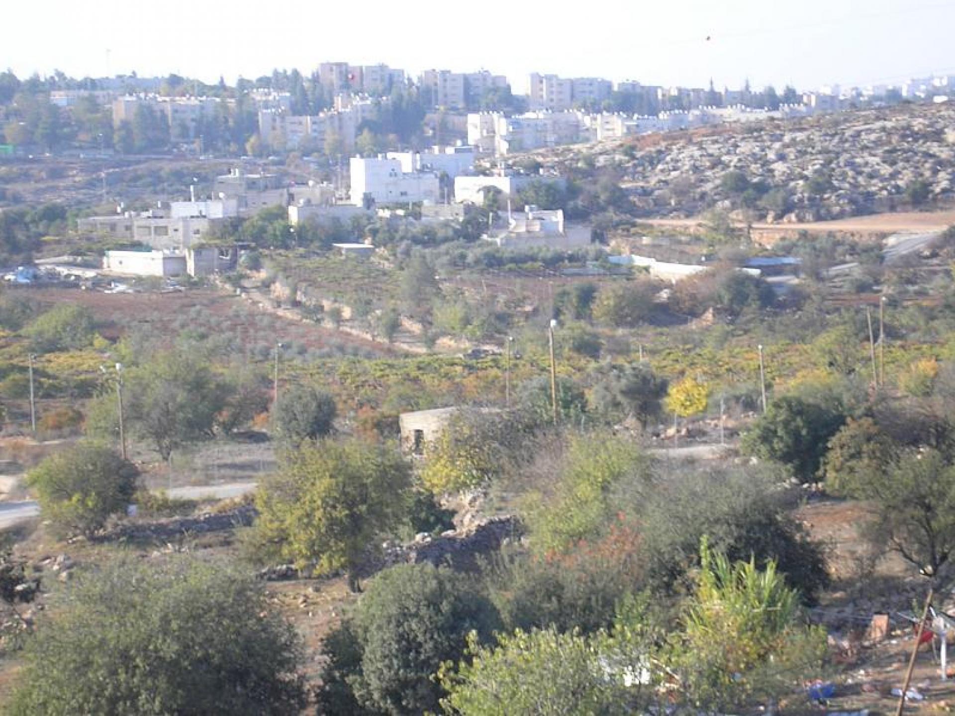 Hebron 11.11.08