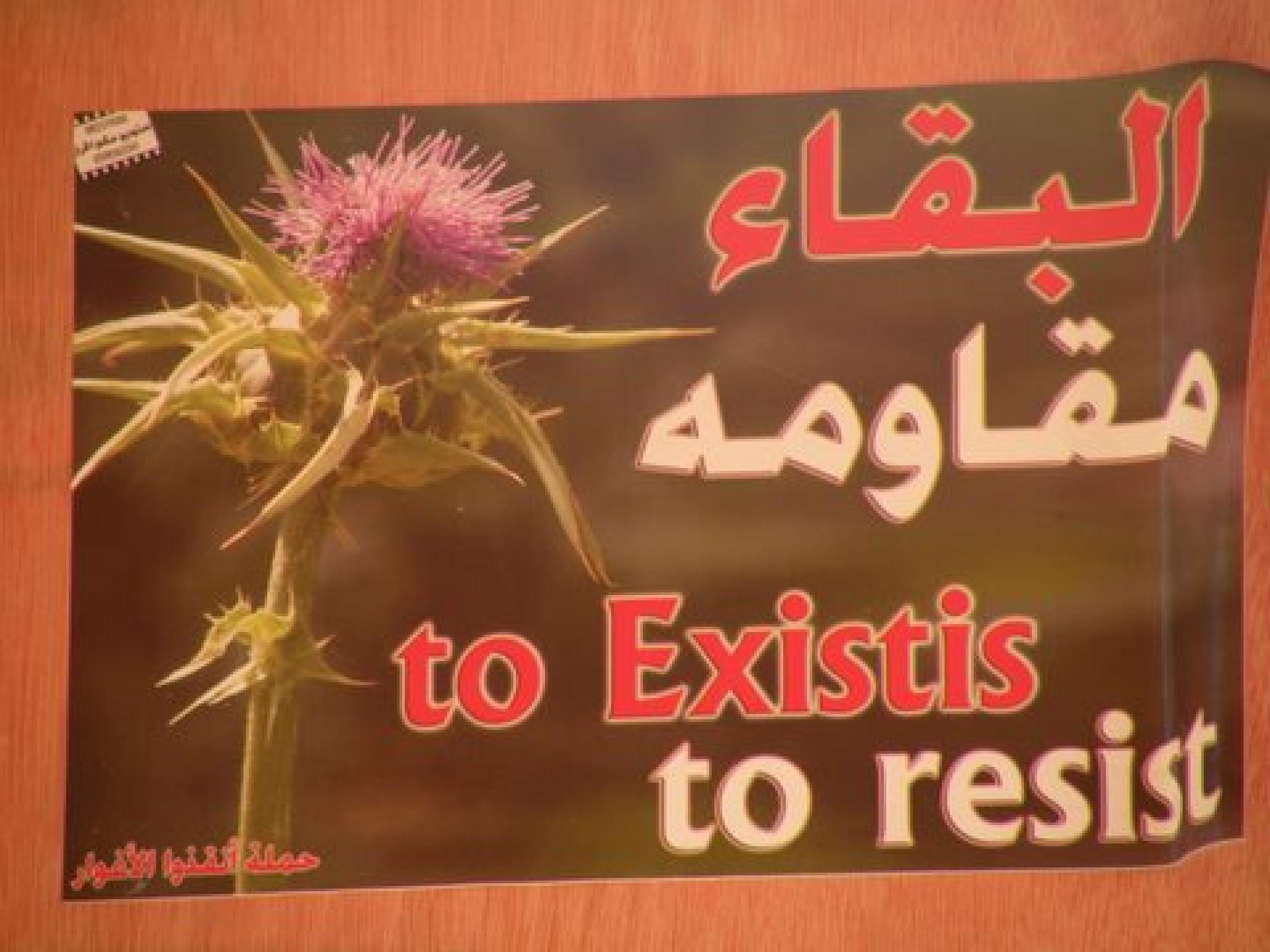 Hamra vicinity 06.01.10