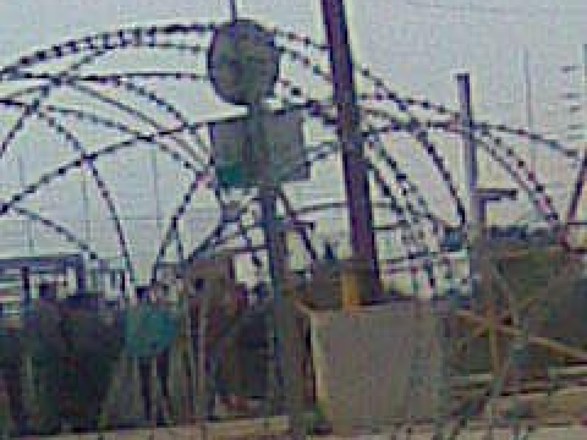 Tura/Shaked checkpoint 09.03.10