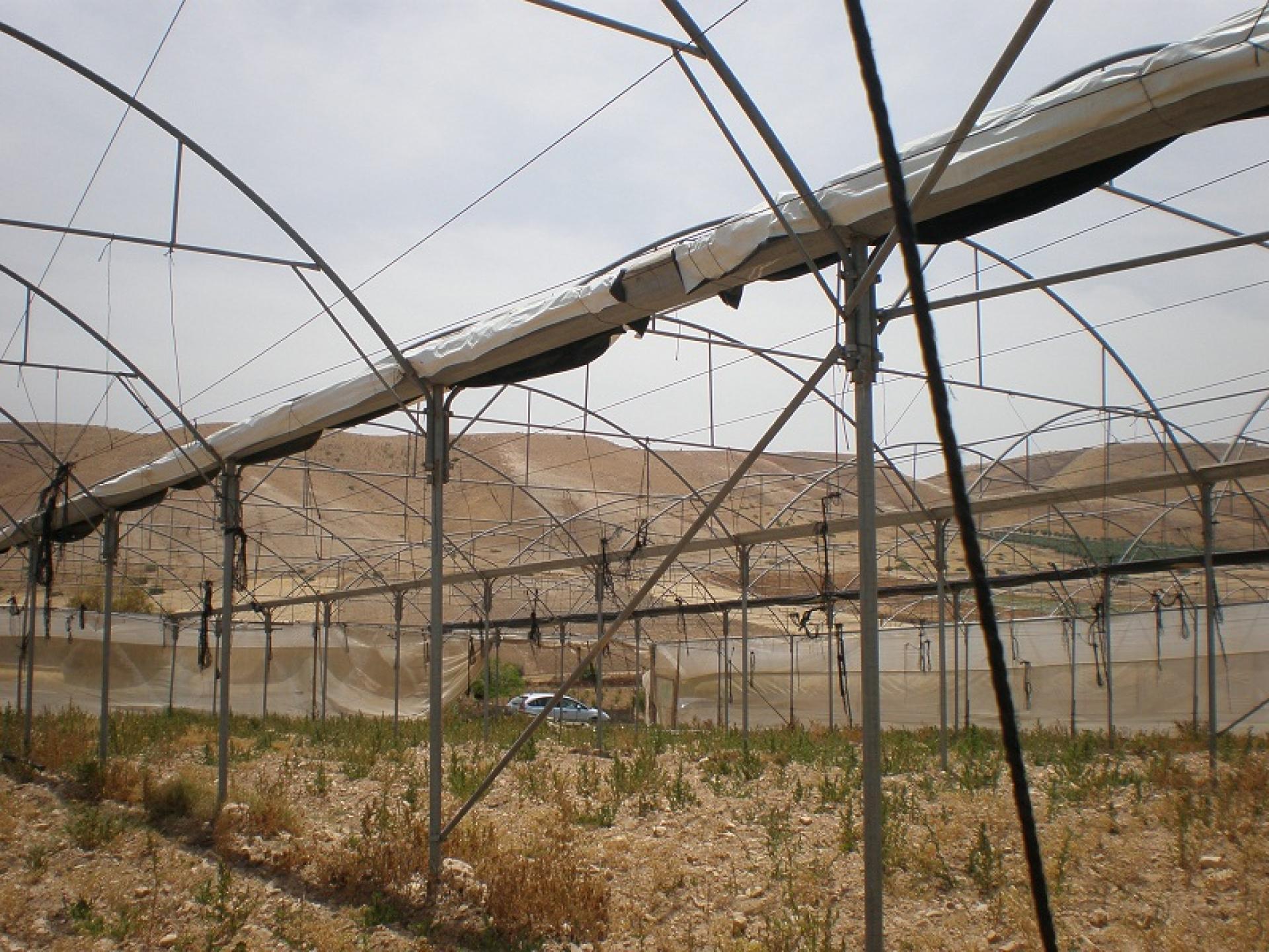 Jordan Valley 22.05.10