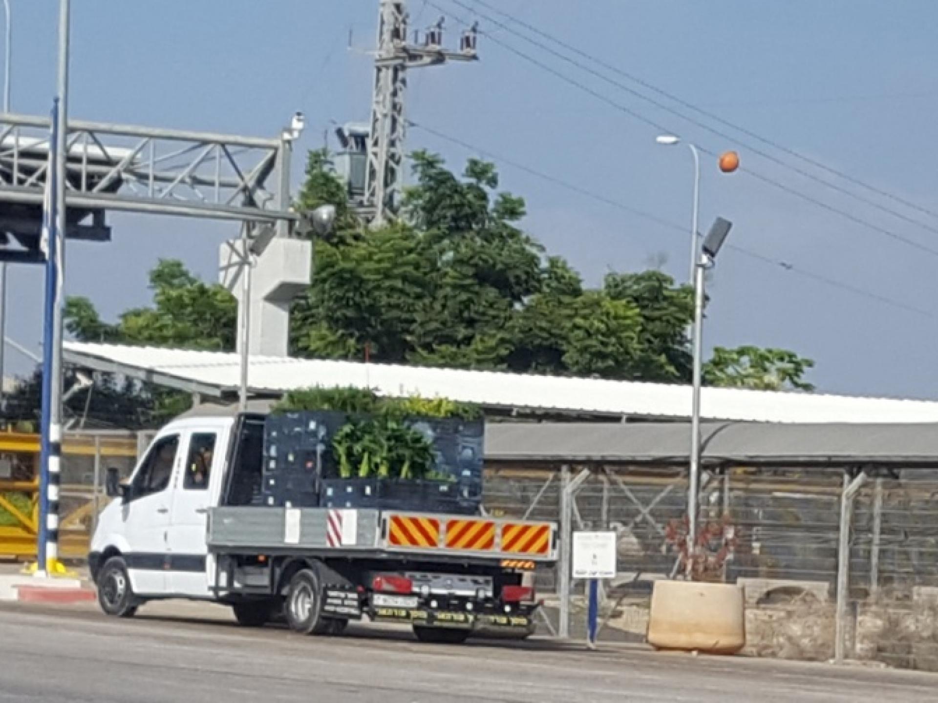 משאית אחת של המשתלות ממתינה לתורה