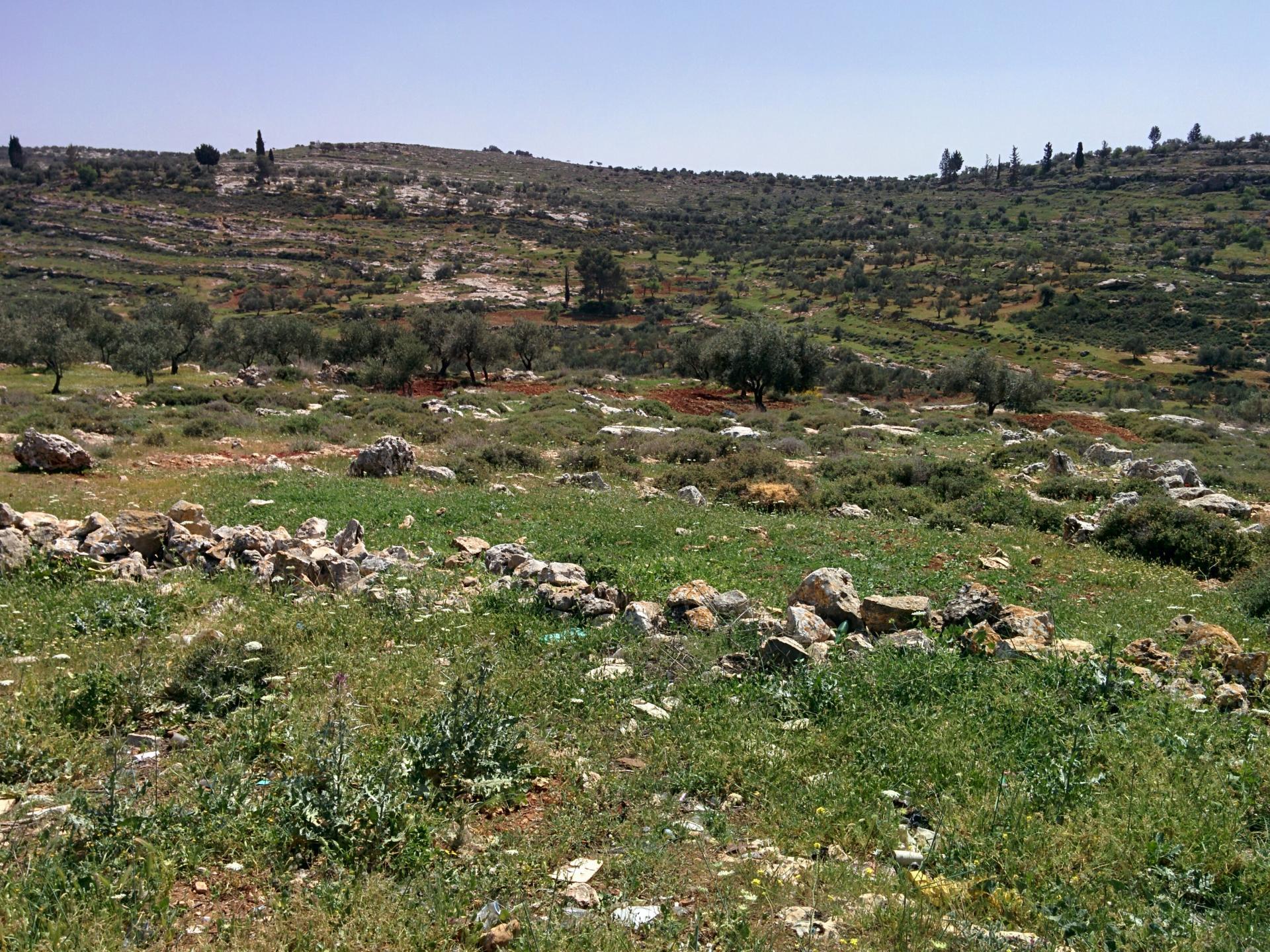 אדמות פרטיות של חקלאי דיר אל חטב ב-21.3.18 לאחר שני ימי ההיתר לחריש במרץ השנה