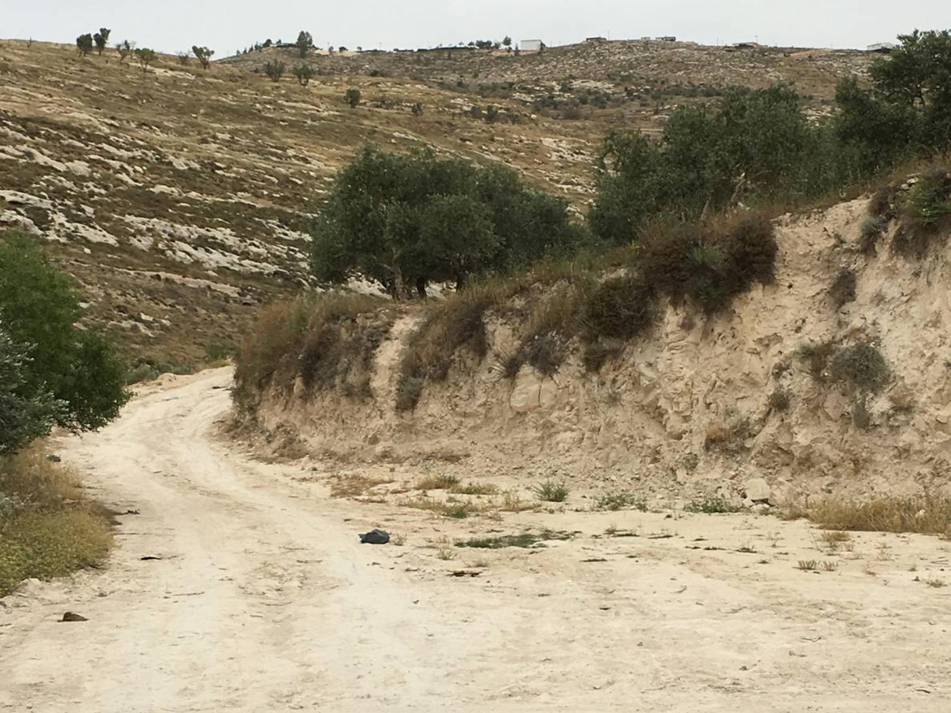הדרך לעינאבוס