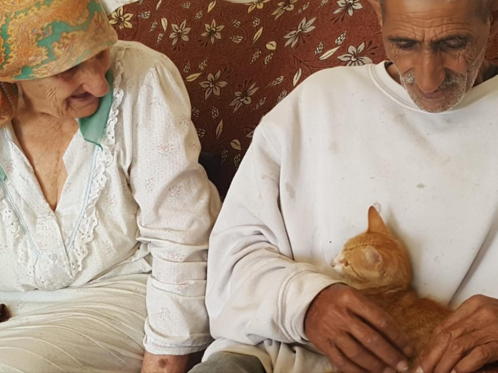 Ata Jabar and his lost cat