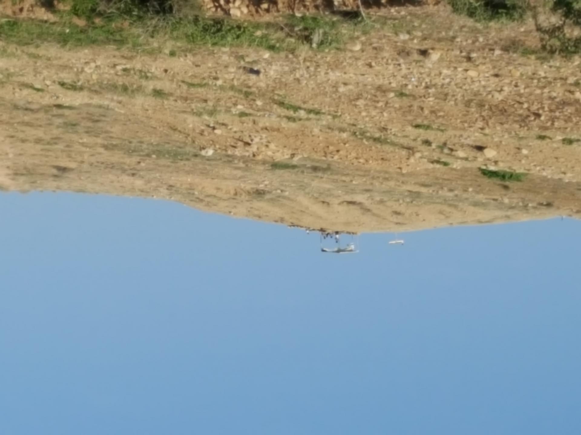 בקעת הירדן: מאחז חדש בפארסיה?