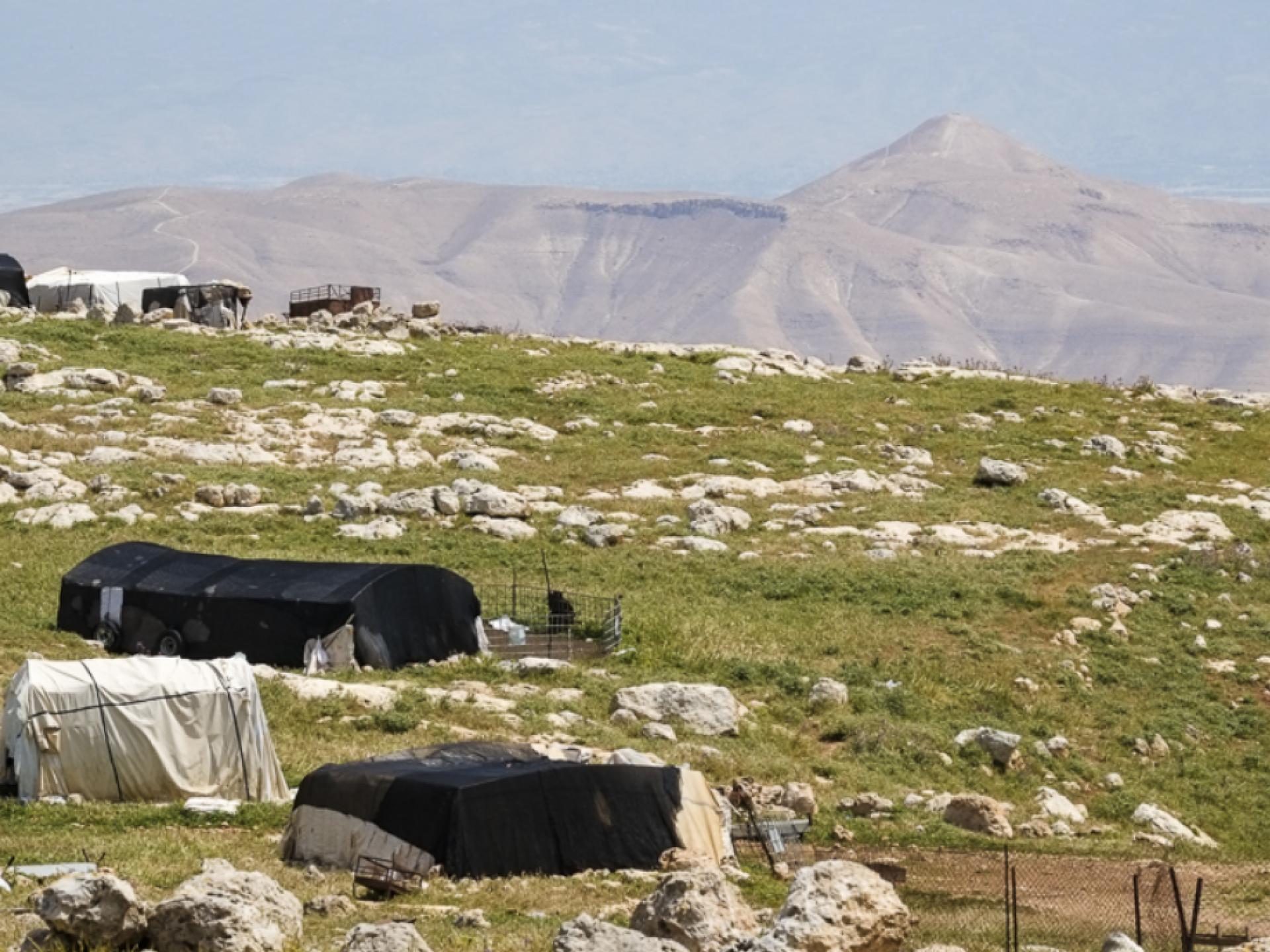 בקעת הירדן, רשאש: מבט לעבר המאהל הבדואי בעין רשאש, ברקע ההר הגבוה ביותר בבקעה, הסרטבּה