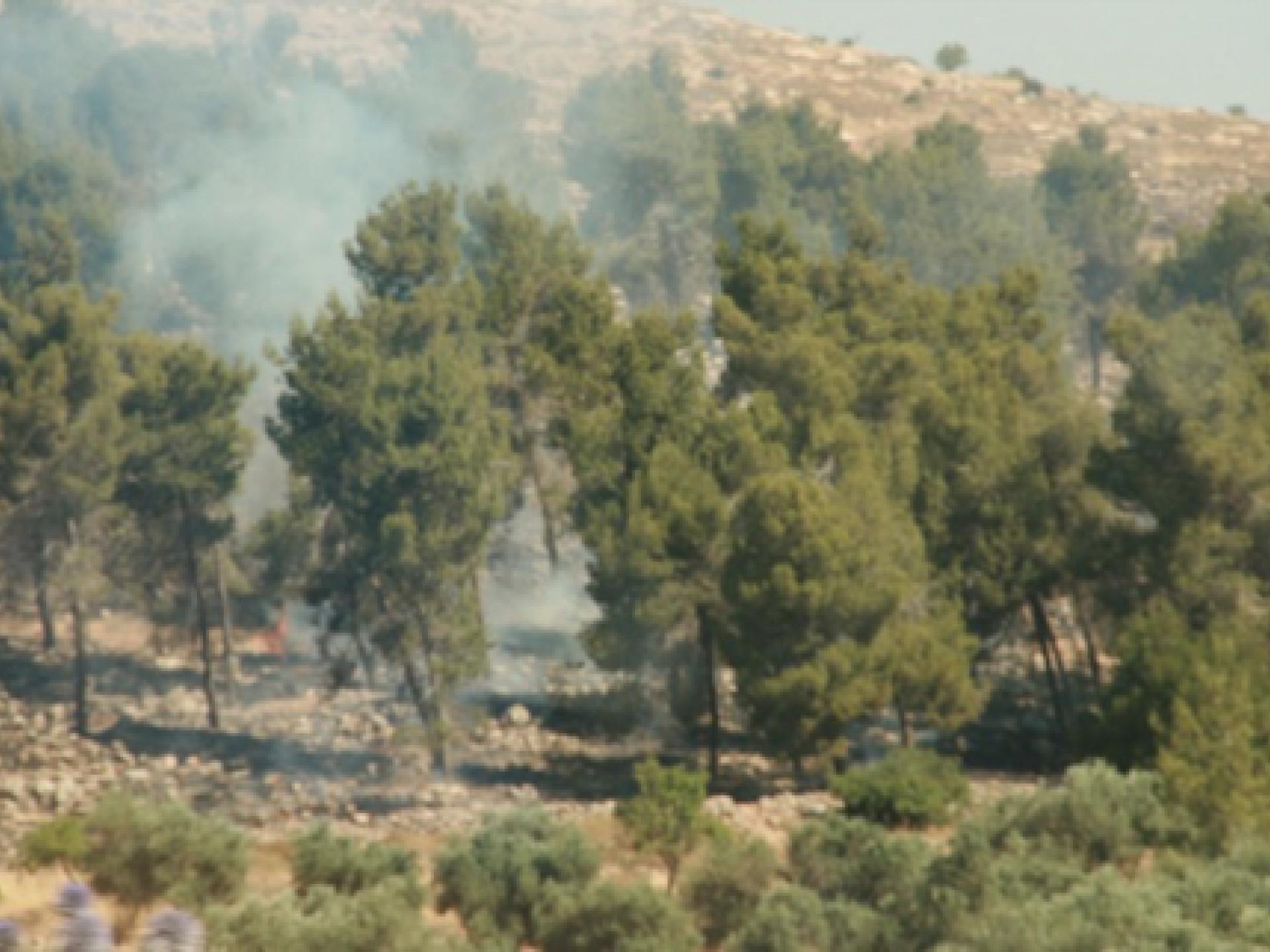 שריפה בדרום הר חברון