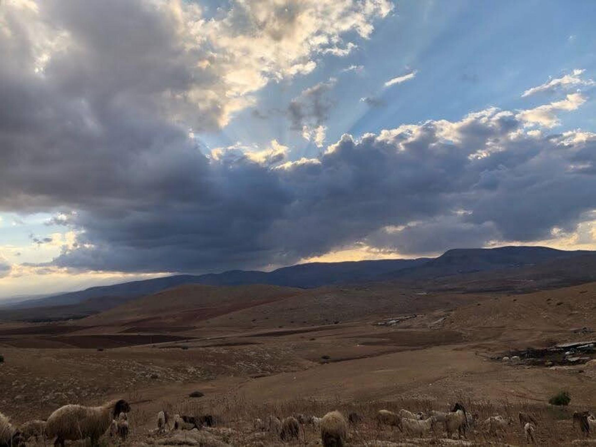 ליווי רועים באום זוקא