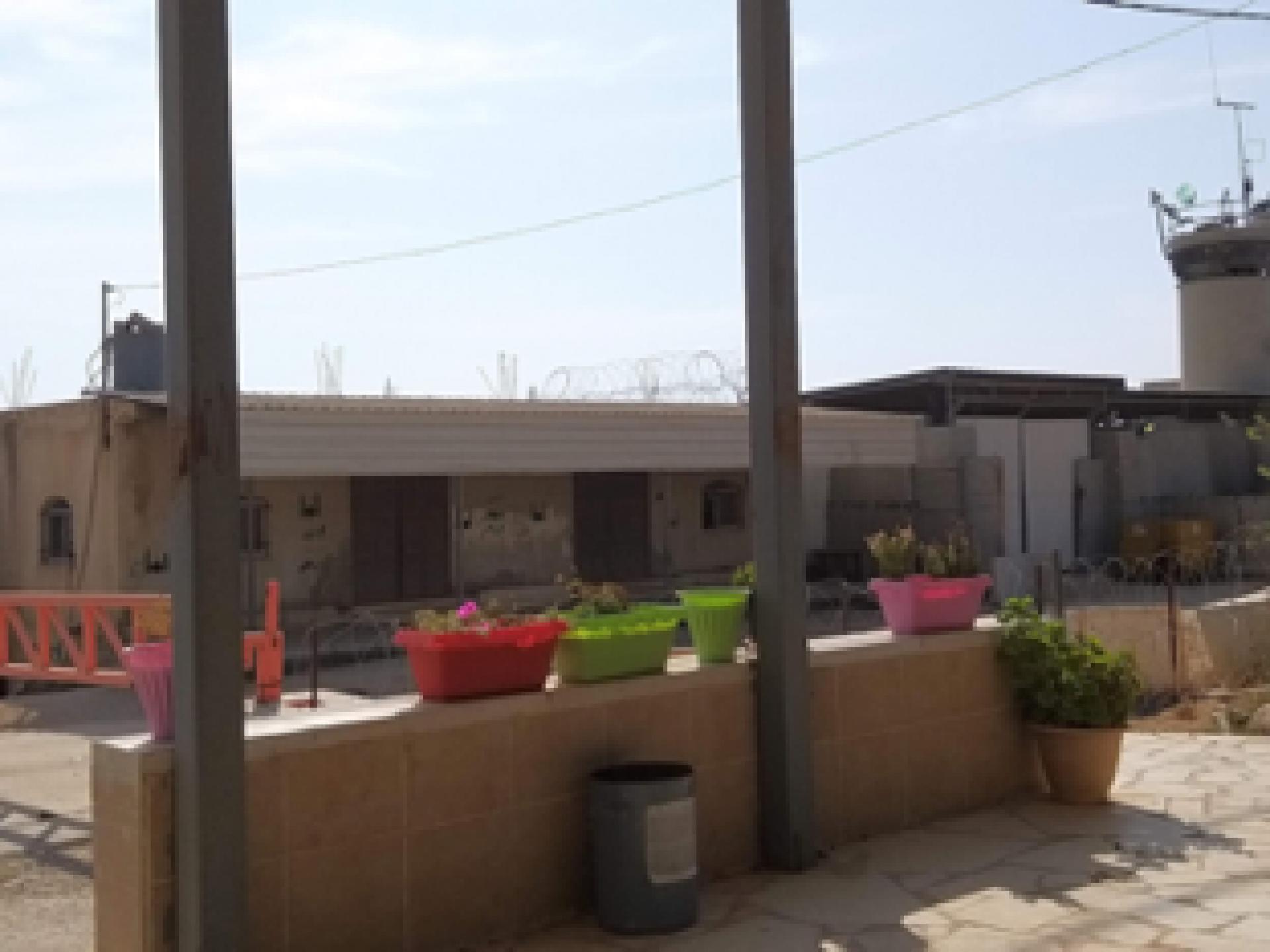 על גג הדיואן בח'ורסה הוסיפו תלתליות