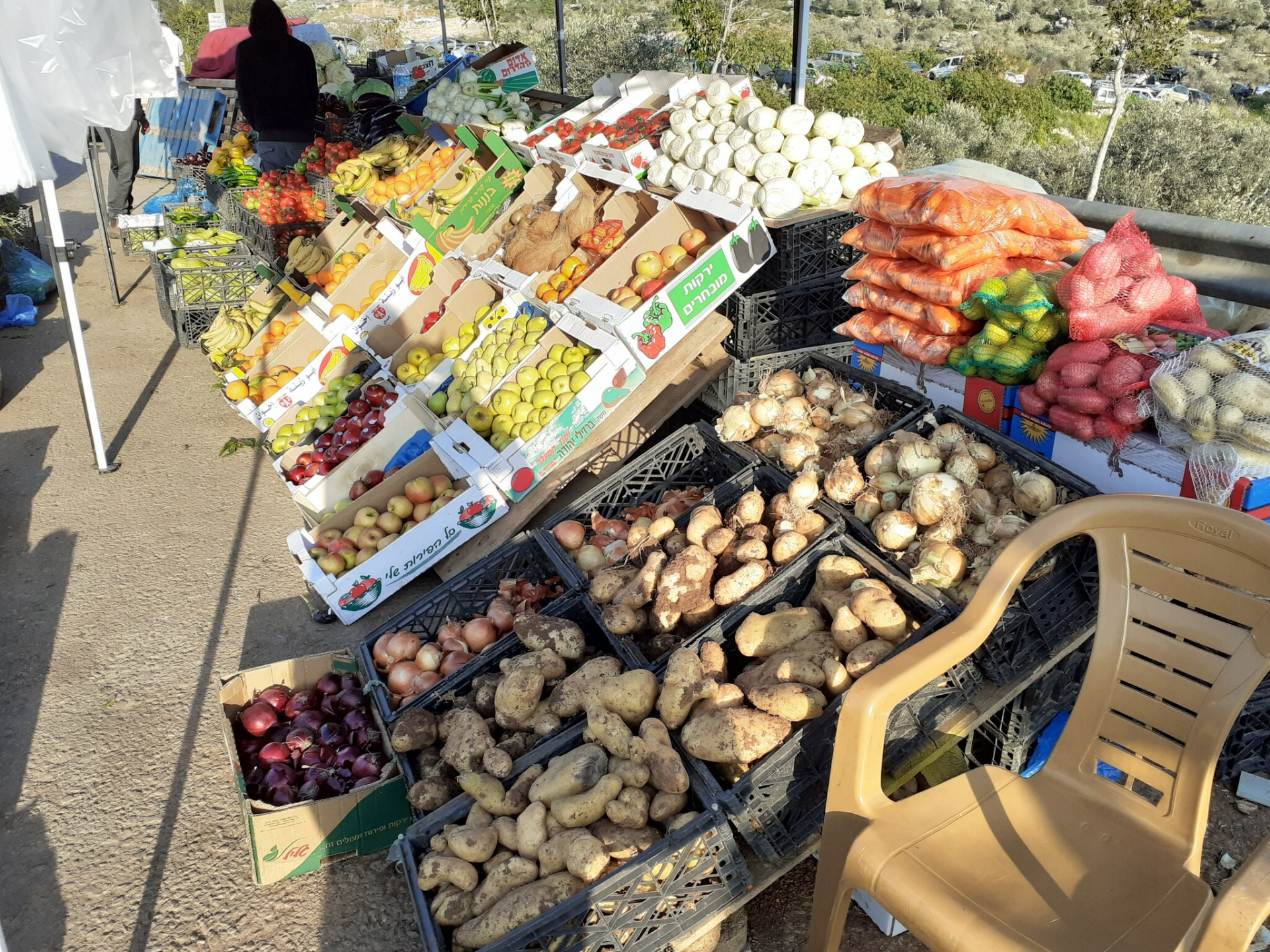 דוכן ירקות ופירות בצומת ברטעה