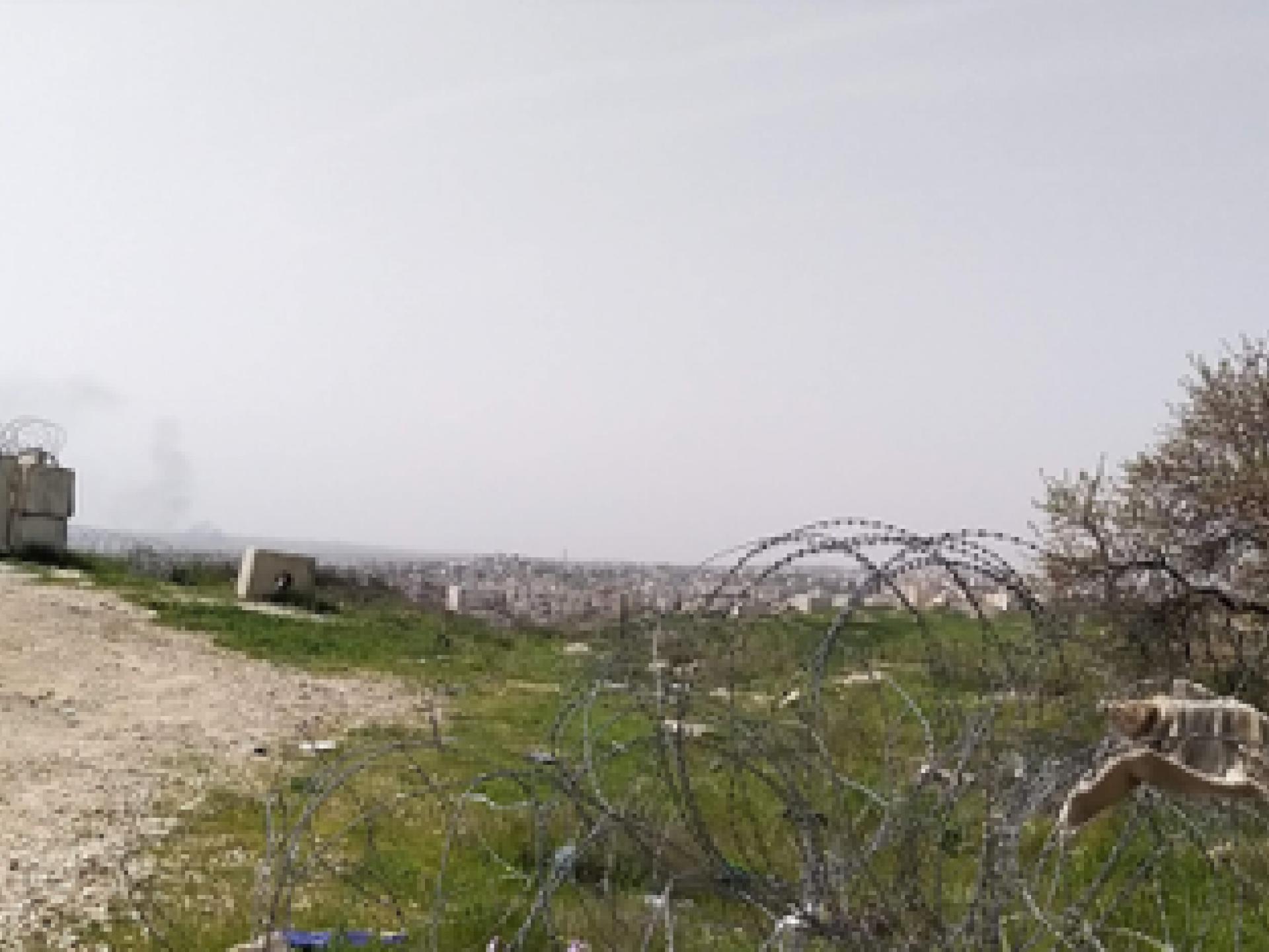 פילבוקס, גדרות תיל ושקדיה פורחת ליד צומת זיף