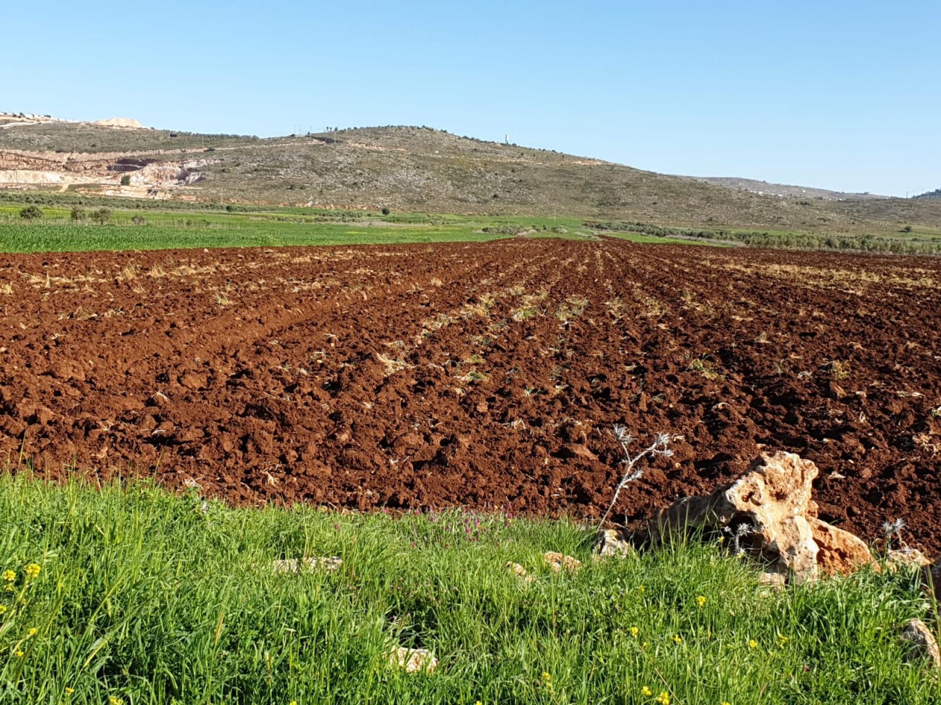 עמק החקלאות הפורה וחגורת המאחזים מצפון