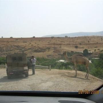 Hamra/Beqaot checkpoint 28.08.08