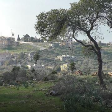 A view of Nabi Saleh from the edge of the reserve