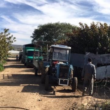 חקלאים מחכים לעבור את מחסום פלאמיה צפון