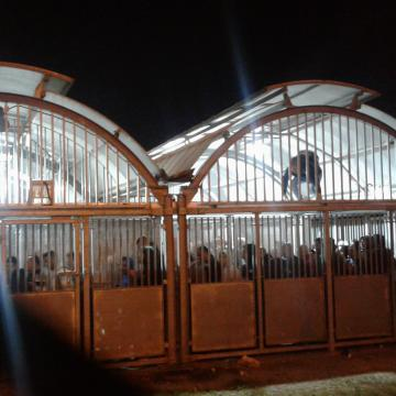 Crowded at the Irtah checkpoint. Young people climb the bars.