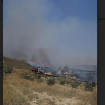 אש בשדות בורין